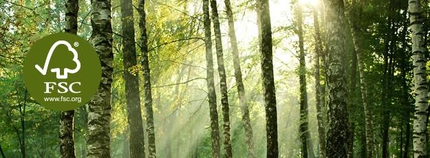 Privato: Certificazione FSC : le foreste non si posso difender da sole.